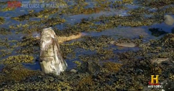 Was Oak Island Mystery Who Finally Solved